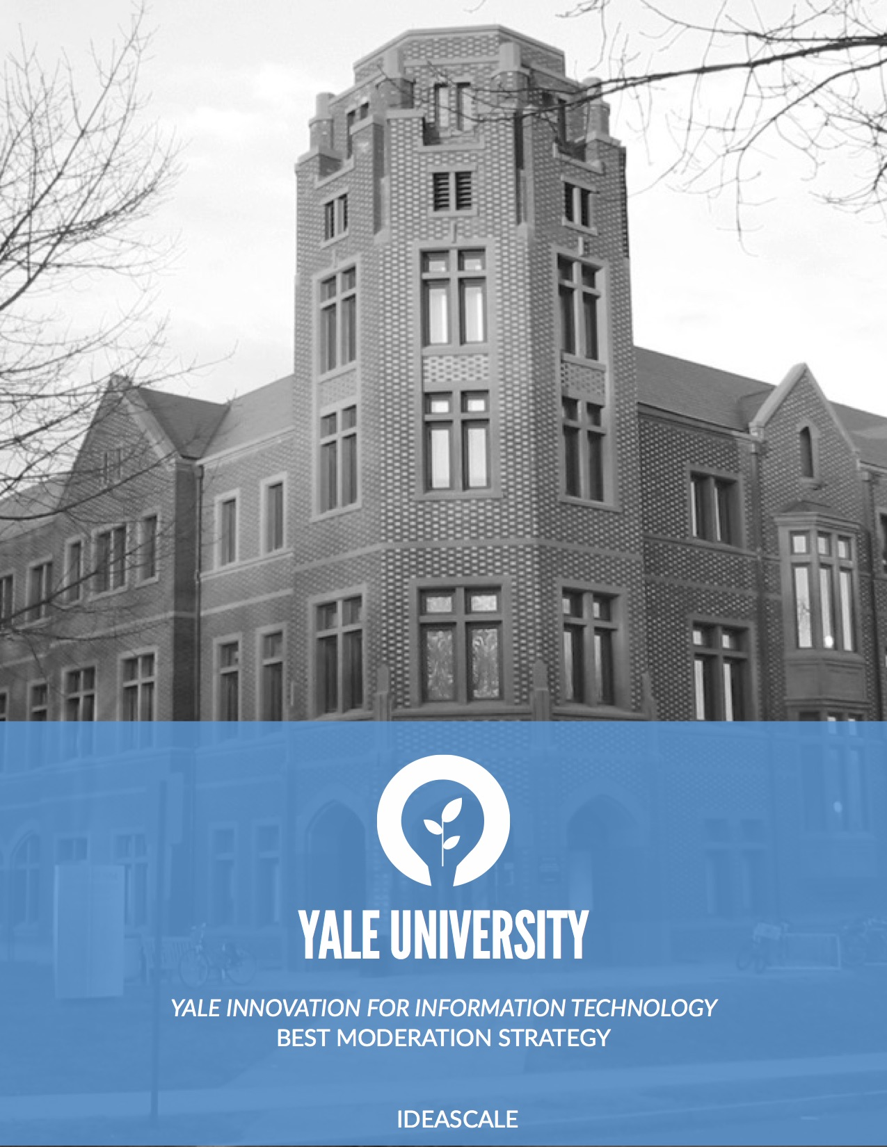 Cover Letter Yale Custom Essays Online To Buy Perfect